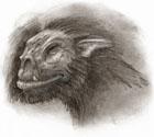 Ork rysunek