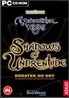Neverwinter Nights: Shadows of Undrentide