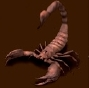 Olbrzymi skorpion