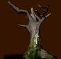 Wiedźmie drzewo