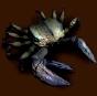 Olbrzymi krab