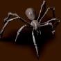 Mały szmaragdowy pająk