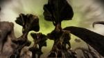 dragon age: początek, ea games, bioware, fade, geografia, ferelden, screen