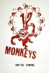 12 małp