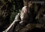 hobbit, ian mckellen