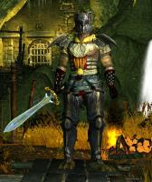 wojownik cienia, klasa