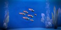 słoneczna ryba z thessi