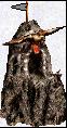 gniazdo na urwisku