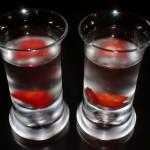 neuro, neuroshima, shot, drink, alko