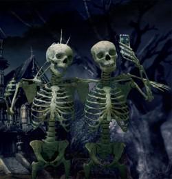 halloween, szkielety
