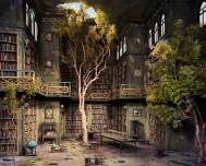 biblioteka, fantasy, drzewa, książki