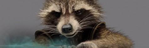 strażnicy galaktyki, rocket raccoon, bradley cooper