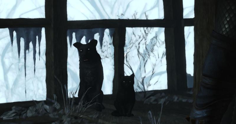 pies i kot, wiedźmin 3, serca z kamienia