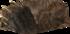 niedźwiedzia skóra