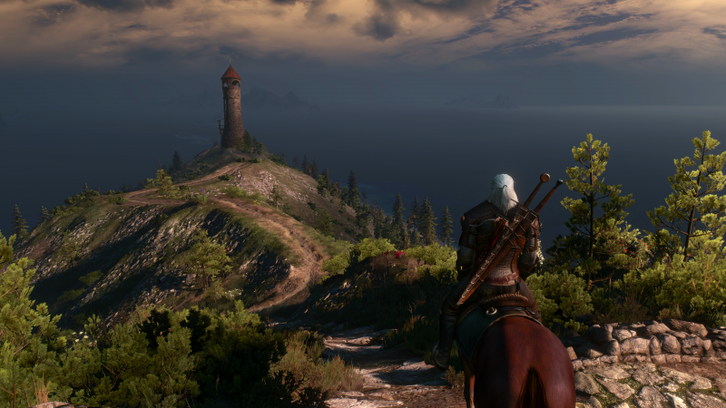 wiedźmin 3, dziki gon, the witcher 3