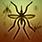 plaga owadów