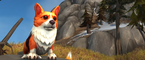 world of warcraft, corgi pup