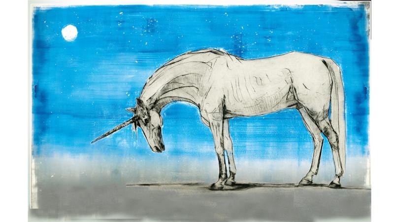 fantastyczne zwierzęta i jak je znaleźć