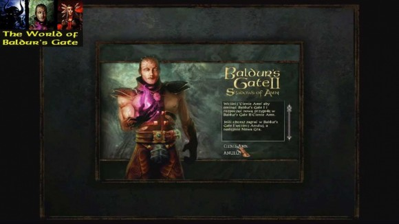 baldur's gate,world of baldur's gate