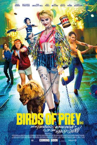 ptaki nocy (i fantastyczna emancypacja pewnej harley quinn),ptaki nocy