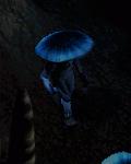 niebieski mykonid