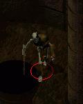 poszarpany szkielet