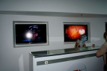 Asari prezentowały galerię zdjęć